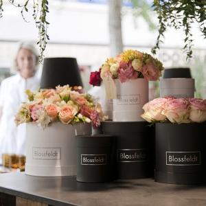 Blossfeldt_Flower_Box_Rosen01