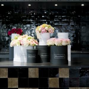 Blossfeldt_Flower_Box_Rosen02