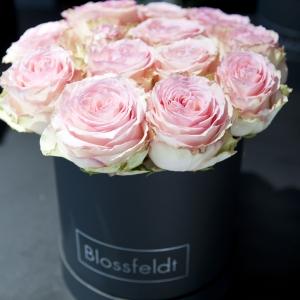 Blossfeldt_Flower_Box_Rosen03