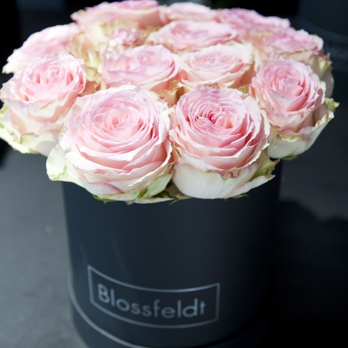 Blossfeldt_Flower_Box_Rosen03